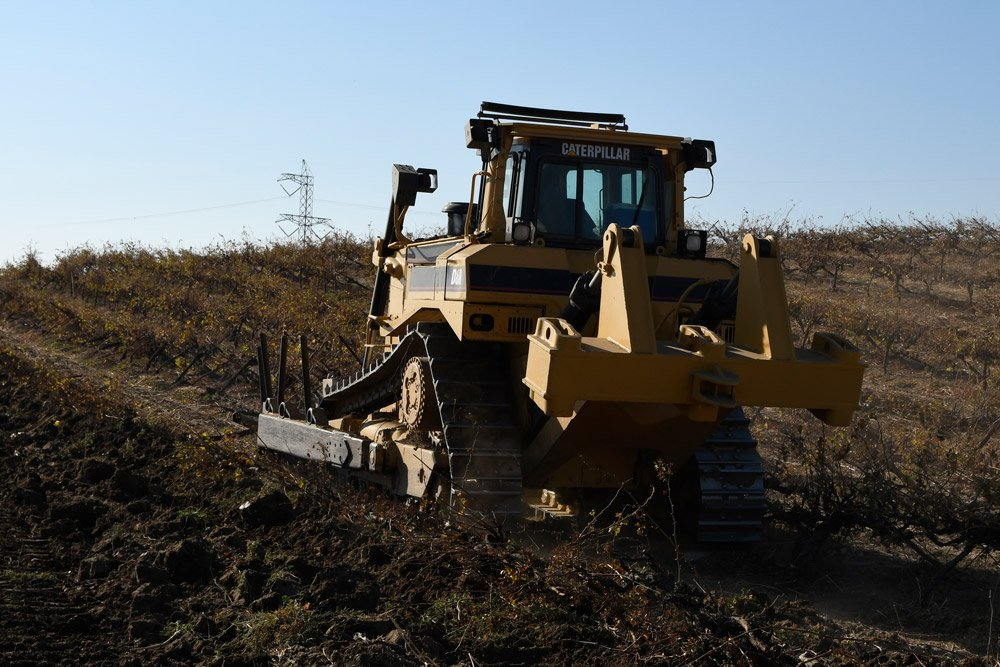A&L Services, Inc Caterpillar Removing a Vineyard